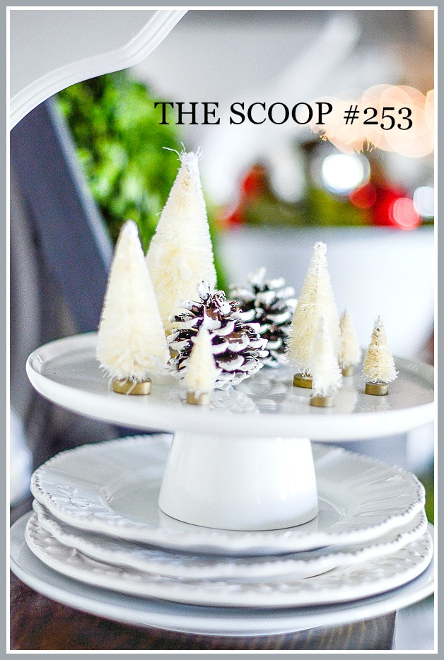 THE SCOOP #253- We compiled hundreds of the best home and garden post on the web. Lots of holiday post too!
