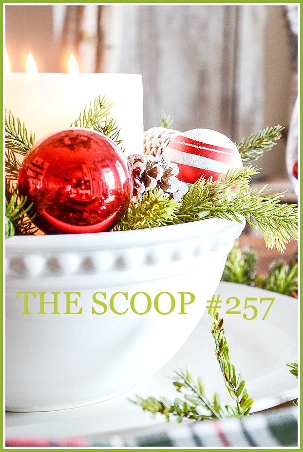 THE SCOOP #257-Find the best of home and garden post from around the web all in one place.