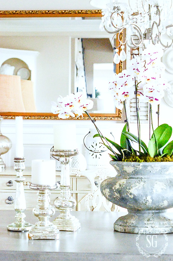 BEAUTIFUL ORCHIDS-How to decorate with and care for orchids.