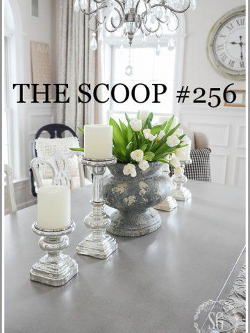 THE SCOOP #256