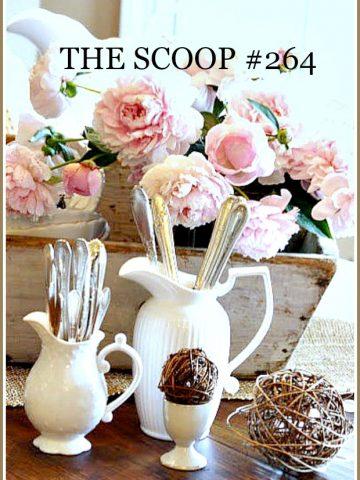 THE SCOOP #264