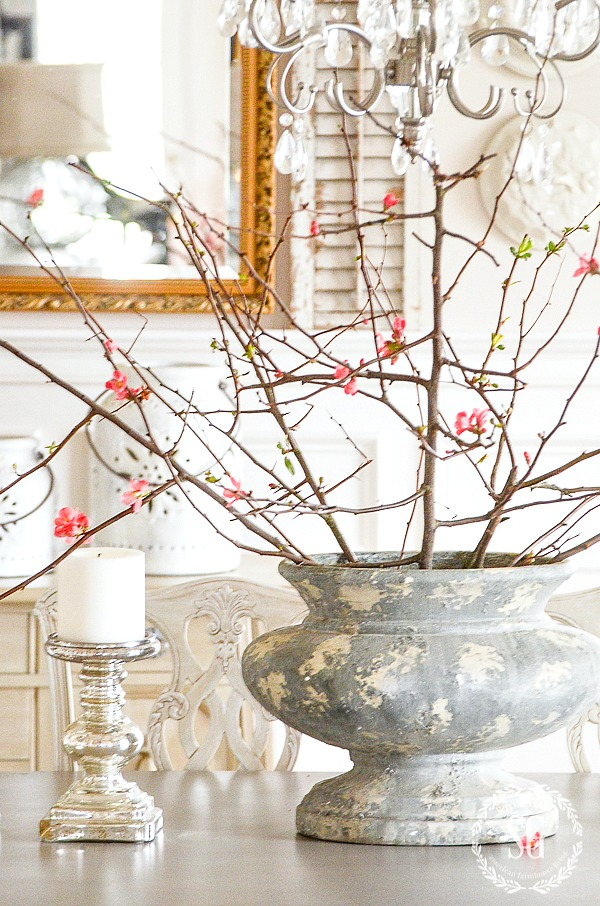 HOW TO FORCE BEAUTIFUL BRANCHES- It's time to force budding branches indoors. It's easy! Here's how!