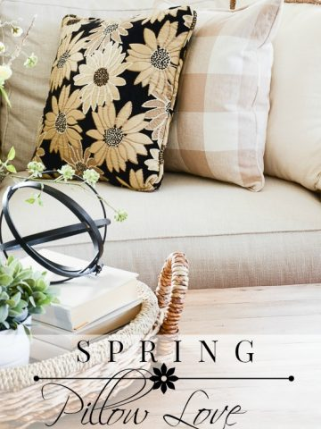 SPRING PILLOW LOVE