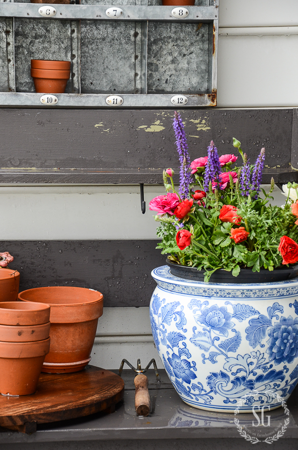 POP OF COLOR GARDENING- Spring is the time to add a big POP of fun color to your patio, porch and garden.