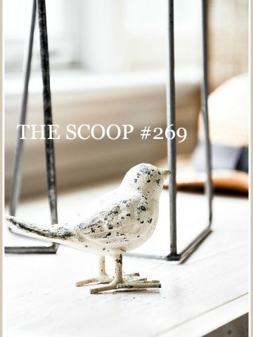 THE SCOOP #269-The best of the home and garden blogs all in one place!