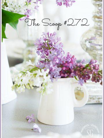 THE SCOOP #272