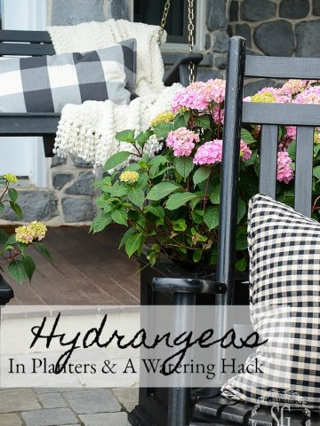 HYDRANGEAS IN PLANTERS AND A SELF-WATERING STAKE DIY