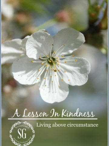 LIVING OUT KINDNESS