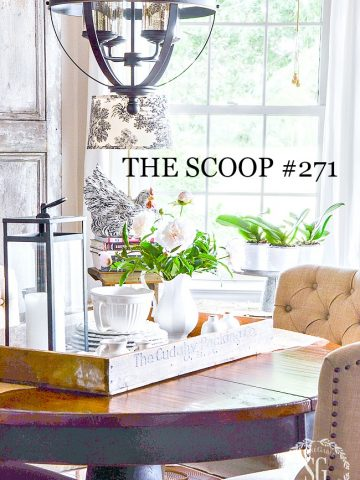 THE SCOOP #271- The best of home and garden post from around the web!