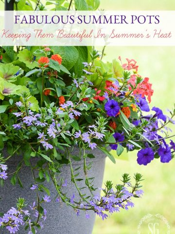 FABULOUS SUMMER POTS... HOW TO KEEP THEM BEAUTIFUL IN SUMMER HEAT!