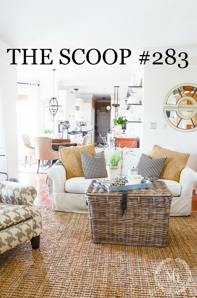 THE SCOOP #283