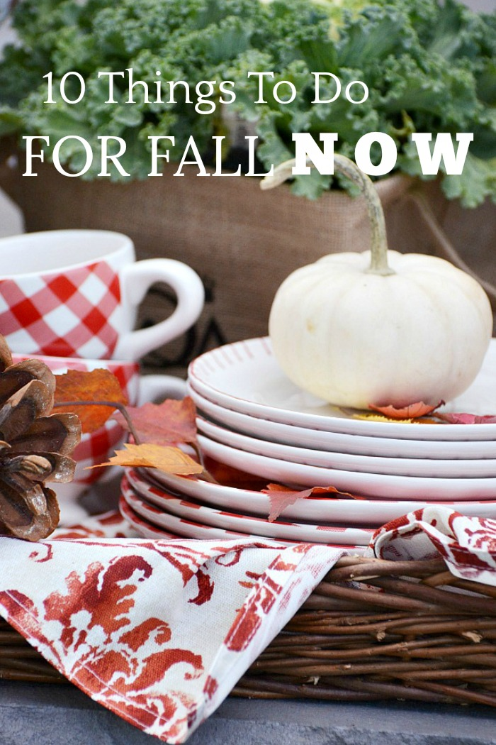 fall scene with basket of red and white checked dinnerware and white pumpkins
