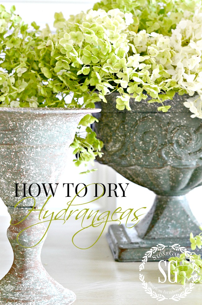 EVERYTHING YOU EVER NEED TO KNOW ABOUT CUT HYDRANGEAS. How to cut them. care for them, arrange them, revive them, dry them and more!