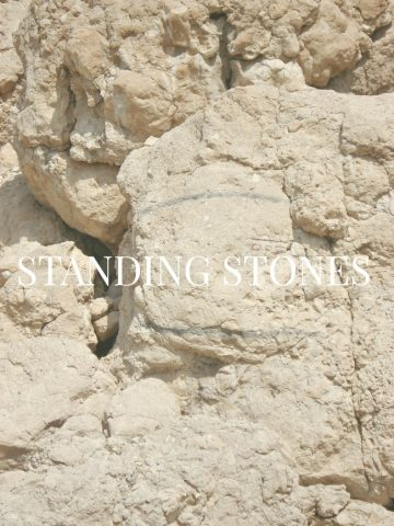 WE ARE STANDING STONES