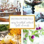COLLAGE OF FALL DECORATING IDEAS