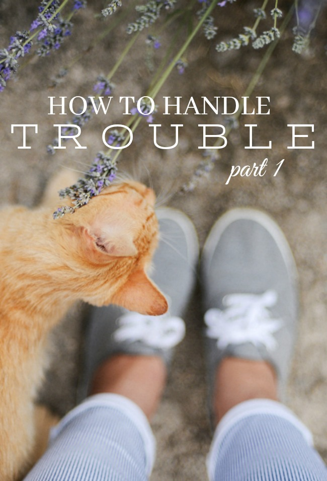 HOW TO HANDLE TROUBLE- We are all facing trials of one kind or another. Let's face them God's way!