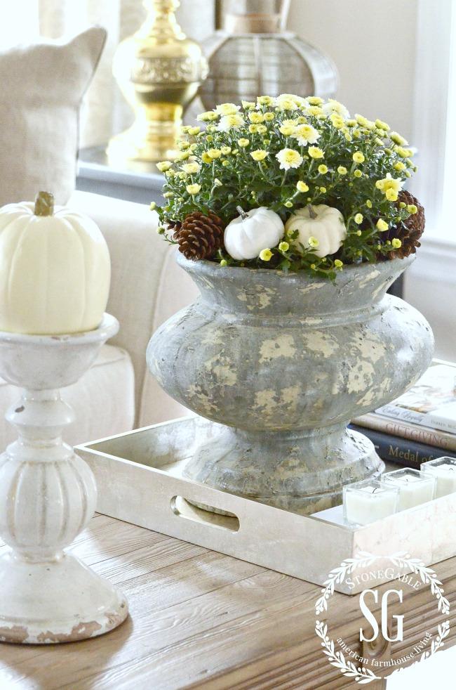 large urn of white mums