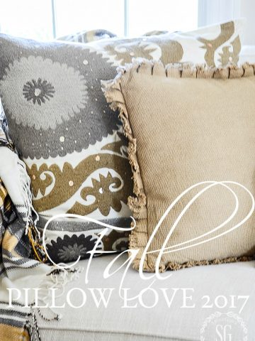 FALL PILLOW LOVE 2017