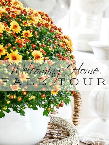 WELCOMING HOME FALL TOUR