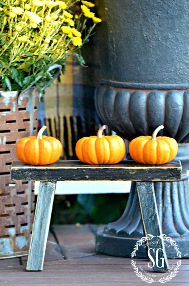 three baby boo pumpkins on a bench