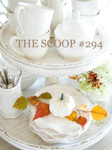 THE SCOOP #294