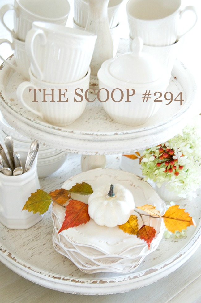 THE SCOOP #294- Here's the best of home and garden post from the best blogs on the web all in one convenient place. Lots of fall too!