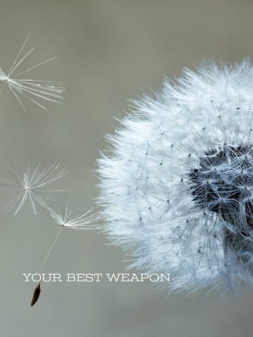 YOUR BEST WEAPON