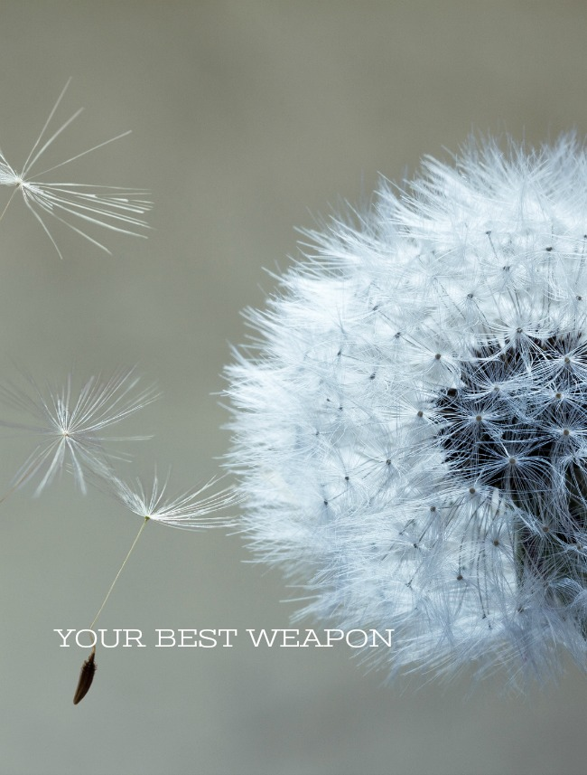 YOUR BEST WEAPON- when your heart is heavy you are not helpless. You have a weapon to fight off your troubles. The best weapon