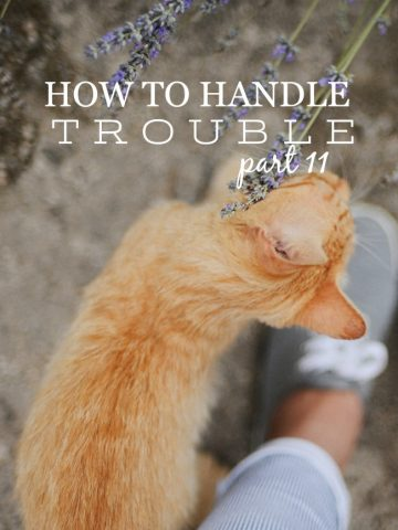 HOW TO HANDLE TROUBLE, PART II