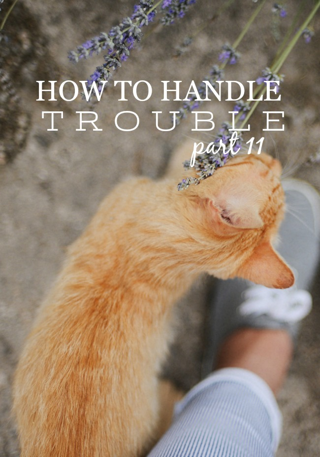 HOW TO HANDLE TROUBLE- In this like we are guaranteed trials. We need to know how to handle them God's way.