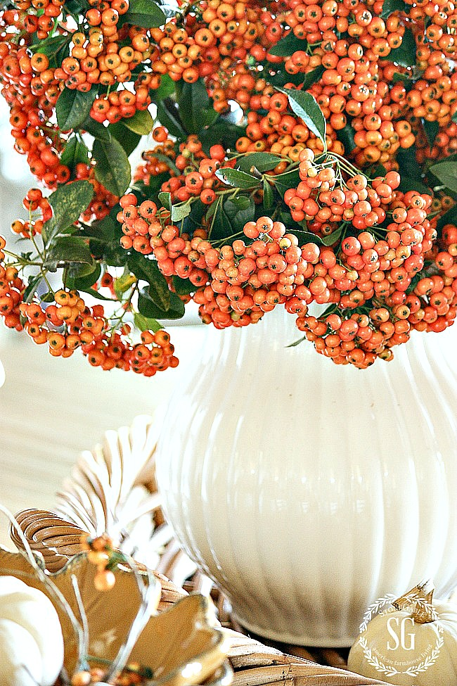 big white pitcher filled with orange berries