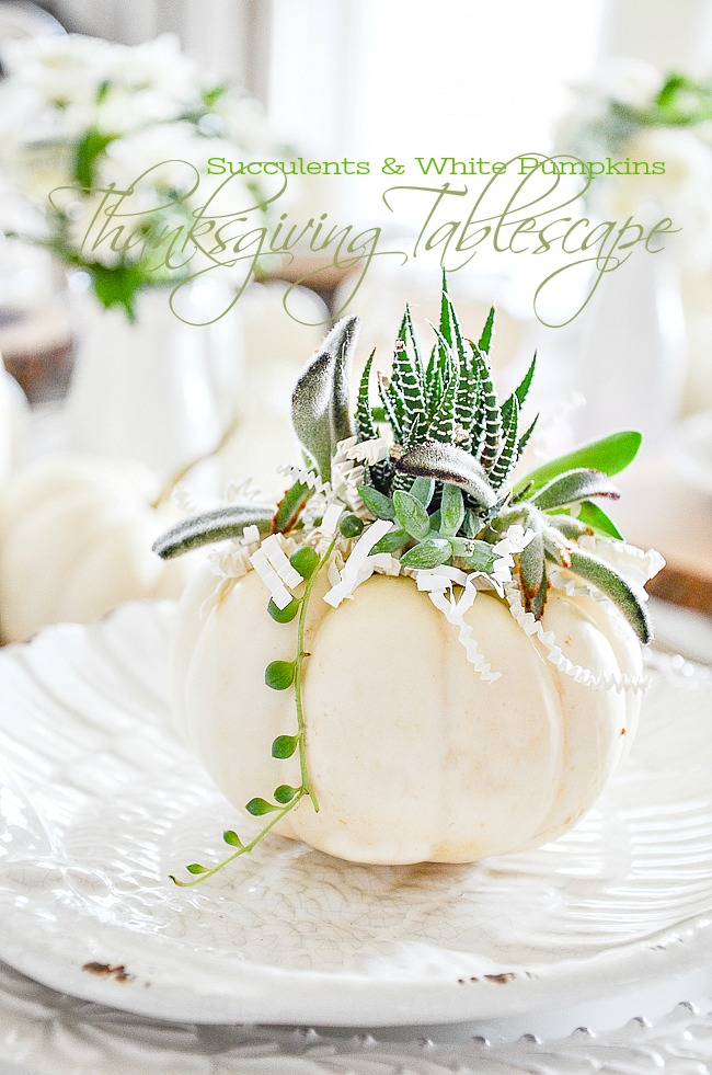 SUCCULENTS AND WHTE PUMPKINS- A BEAUTIFUL TABLE THAT IS EASY TO SET. And lots of ideas for your Thanksgiving table and more!