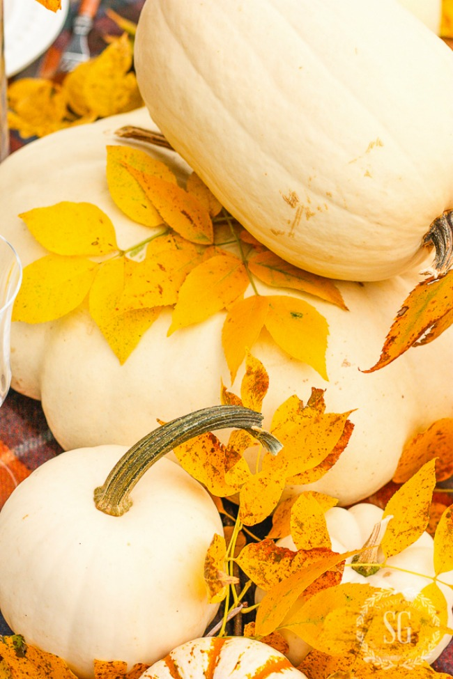 gold fall leaves and white pumpkins