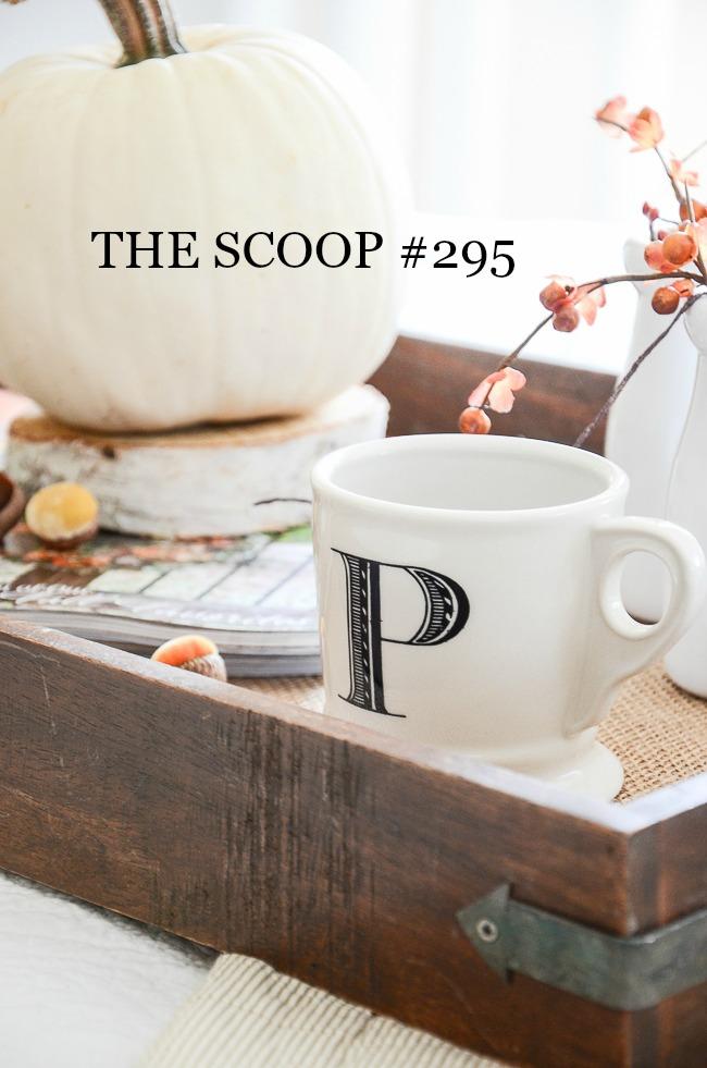 THE SCOOP #295