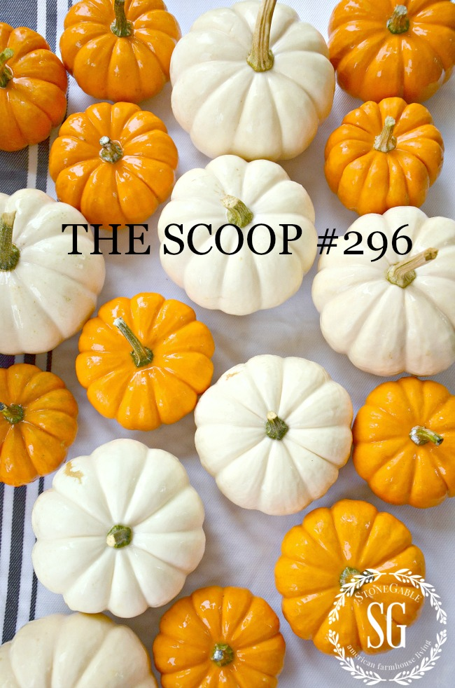 THE SCOOP #296- GET THE BEST OF HOME AND GARDEN IDEAS ALL IN ONE CONVENIENT PLACE. LOTS OF SEASONAL INSPIRATION TOO!