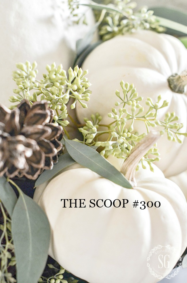THE SCOOP #300- Get the best inspiration and ideas from your favorite blogs all in one place!