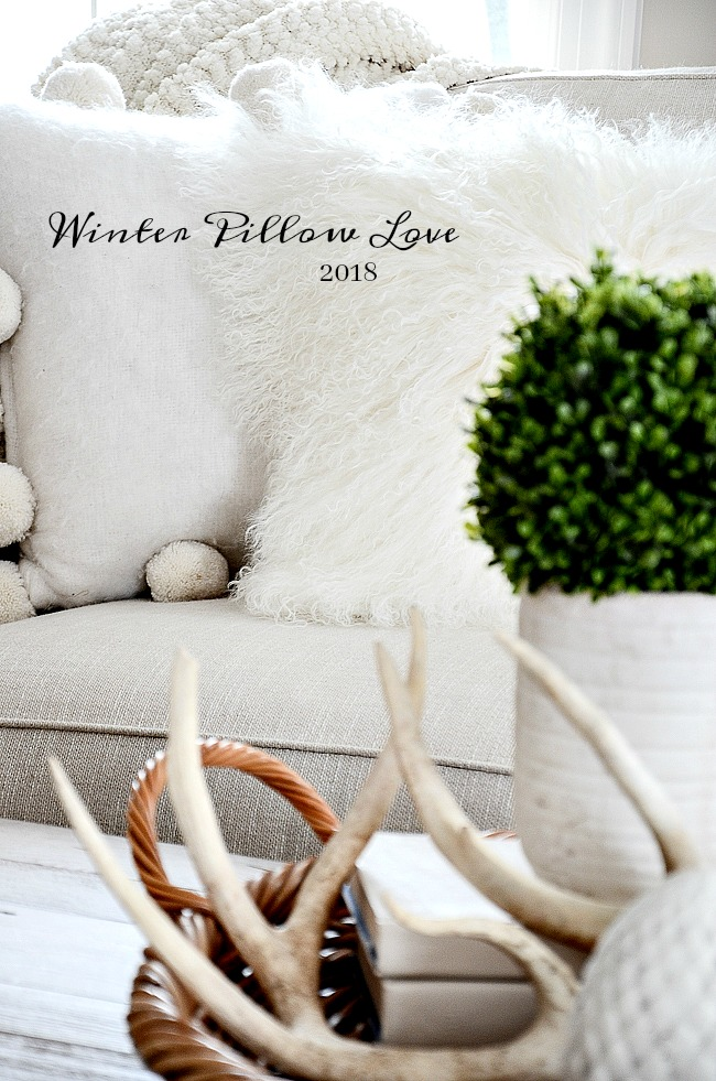 WINTER PILLOW LOVE 2017- Winter is the perfect time to bring beauty to your home with textural pillows! I've perused the best pillow sites and found the best of the best!