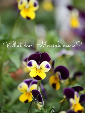WHAT DOES MESSIAH MEAN?