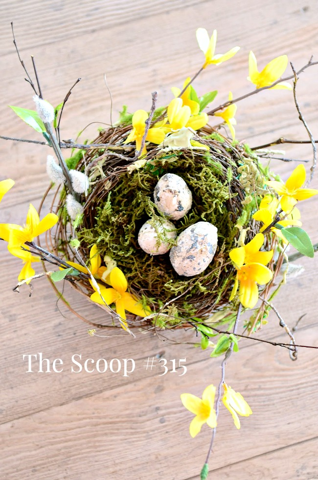 THE SCOOP #315- Find all your favorite home and garden bloggers sharing their best in one place. Join in!