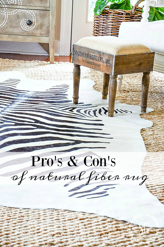 PRO'S AND CON'S OF NATURAL FIBER RUG- A definitive post on the pro's and con's of beautiful natural fiber rugs.