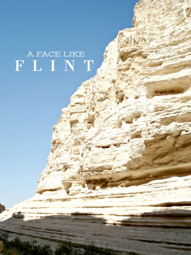 A FACE LIKE FLINT- A lesson about Jesus taught in Israel.