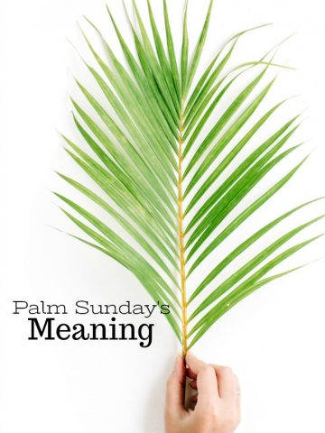 PALM SUNDAY'S MEANING- Why do we celebrate Psalm Sunday? Travel back to the day's of Jesus for a christian perspective.