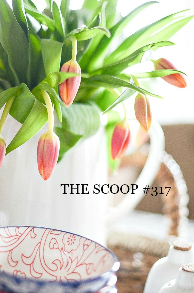 THE SCOOP #317