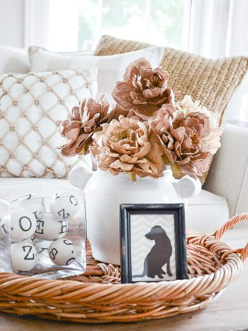 5 REASONS YOU THINK YOU CAN'T DECORATE