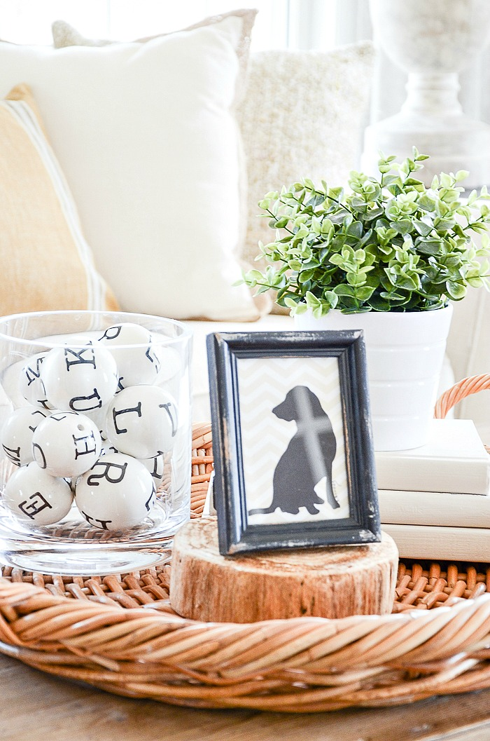 VIGNETTE WITH SMALL PLANT, ROUND CONTAINER OF ALPHABET BALLS AND A LITTLE IMAGE OF A DOG IN A BLACK FRAME. THE SCOOP
