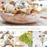 COLLAGE OF FALL NATURAL ELEMENTS USED IN HOME DECOR