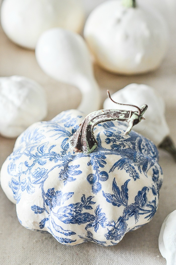 blue and white pumpkin with the stem on