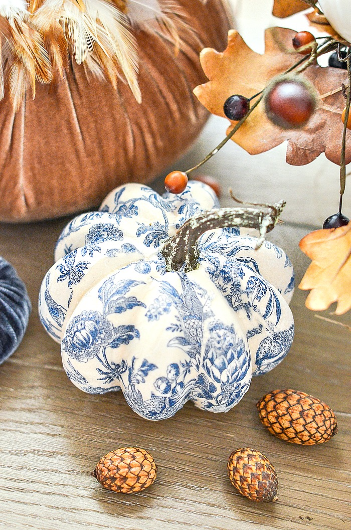 blue and white pumpkin next to a sable velvet pumpkin