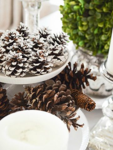 HOW TO FAKE CLEAN YOUR HOME DURING THE HOLIDAYS...and more