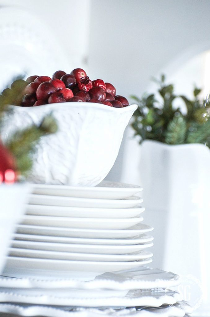 BOWL OF CRANBERRIES ON A STACK OF WHITE DISHES